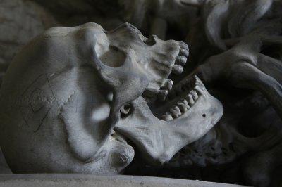 Anatomie: Definition, Ursprünge und Wissenswertes