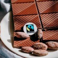 Fairtrade: Konditionen, Standards, Mischprodukt und Mengenausgleich