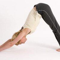 Yoga: Bewegungslehre aus Indien